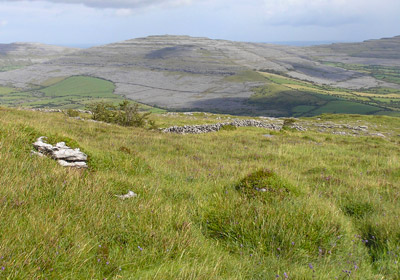 The Burren (Ireland)